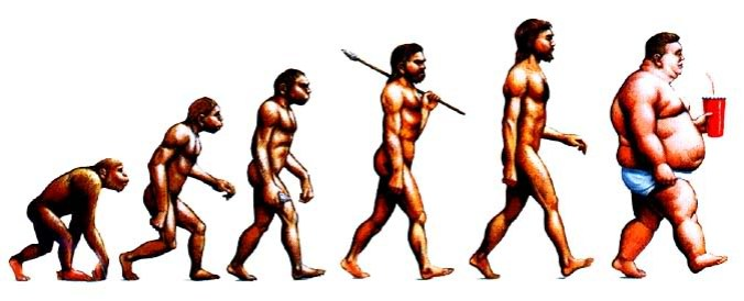 Paleo Diet Progression